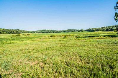 TRACT 4 KY HIGHWAY 853, Greenville, KY 42345 - Photo 2