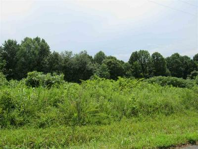 LOT 11 HIDEAWAY BAY, Fountain Run, KY 42133 - Photo 2