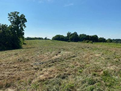 1908 FROEDGE DUBRE RD, Summer Shade, KY 42166 - Photo 2