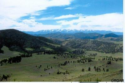 5460 COUNTY ROAD 16, Cotopaxi, CO 81223 - Photo 2