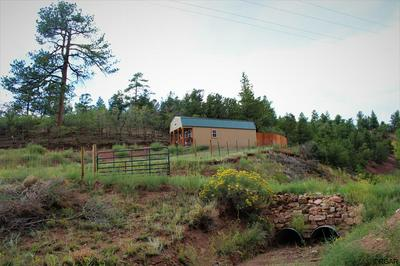7965 COUNTY ROAD 12, Cotopaxi, CO 81223 - Photo 1