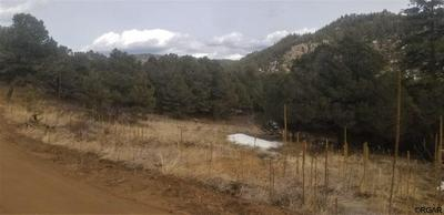 818 RED FEATHER RD, COTOPAXI, CO 81223 - Photo 2