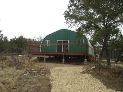 1039 43RD TRL, Cotopaxi, CO 81223 - Photo 1