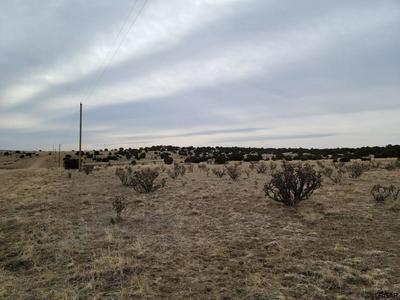 36 CEDARWOOD CT, Pueblo, CO 81007 - Photo 2