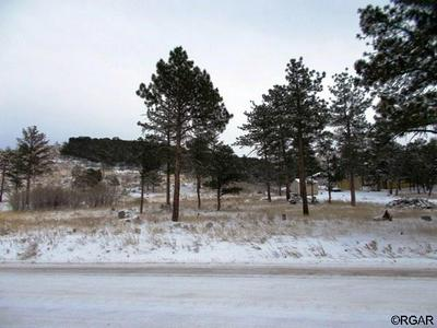 2242 COUNTY ROAD 27A # 109, Cotopaxi, CO 81223 - Photo 2