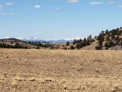 TBD CHEROKEE TRAIL, HARTSEL, CO 80449 - Photo 1