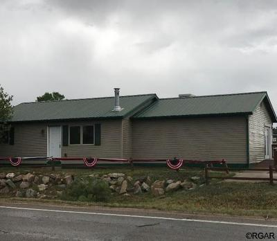 701 FRENCH ST, SILVER CLIFF, CO 81252 - Photo 2