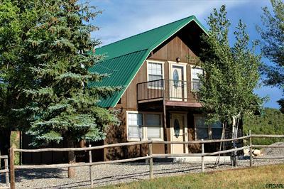 274 COTTONWOOD CREEK ROAD, COALDALE, CO 81222 - Photo 1