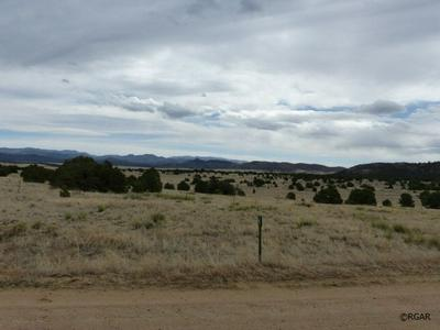 TBD L1 HITCHING POST ROAD, Cotopaxi, CO 81223 - Photo 2