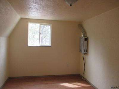 1039 43RD TRL, COTOPAXI, CO 81223 - Photo 2