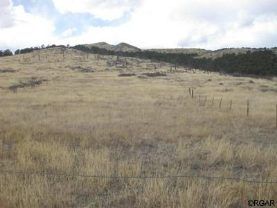 TBD L75 CR 27A, Cotopaxi, CO 81223 - Photo 1