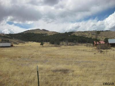 2467 COUNTY ROAD 27A, COTOPAXI, CO 81223 - Photo 1