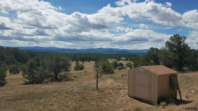 1163 32ND TRL, Cotopaxi, CO 81223 - Photo 1