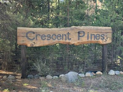 CRESENT PINES, Crescent, OR 97733 - Photo 2