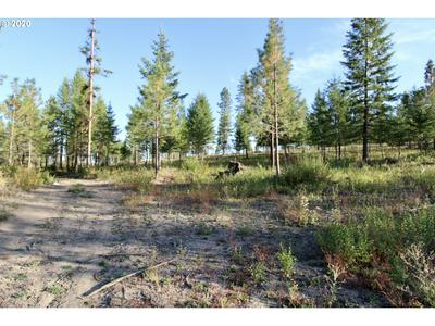 RAIL CANYON RD LOT 9, Ford, WA 99013 - Photo 2