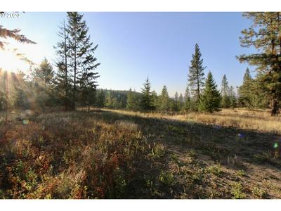 000 RAIL CANYON RD # 3, Ford, WA 99013 - Photo 1