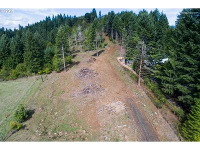 0 FISHER RD, Buxton, OR 97109 - Photo 1