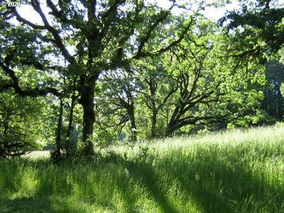 MCBETH, Eugene, OR 97405 - Photo 1