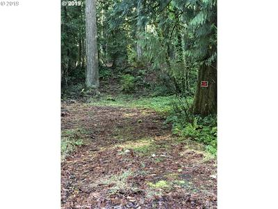 23760 E LOLO PASS RD, Rhododendron, OR 97049 - Photo 1