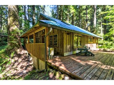 76710 E ROAD 30B LOT 2, Rhododendron, OR 97067 - Photo 2