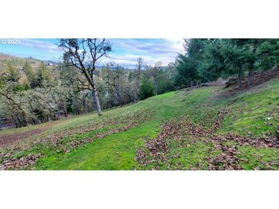 214 GRAY SQUIRREL CT, Winchester, OR 97495 - Photo 2