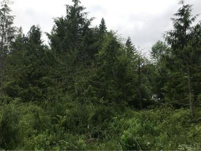 64432 E BRIGHTWOOD LOOP RD, Brightwood, OR 97011 - Photo 2