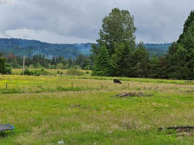 6663 WESTSIDE HWY, Castle Rock, WA 98611 - Photo 2