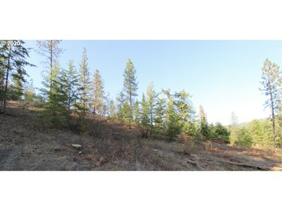 RAIL CANYON RD LOT 6, Ford, WA 99013 - Photo 2