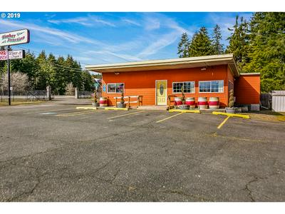 60675 NW SUNSET HWY, Timber, OR 97144 - Photo 1