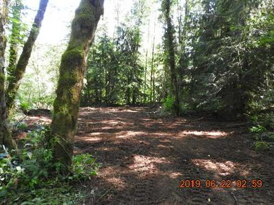 0 BARLOW TRAIL RD, Brightwood, OR 97011 - Photo 1