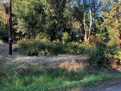 48401 ROBERTS RD, Oakridge, OR 97463 - Photo 2