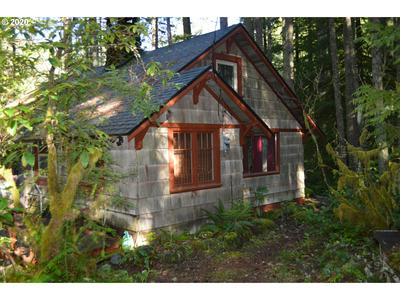 75117 E ROAD 28A # LOT10, Rhododendron, OR 97049 - Photo 1