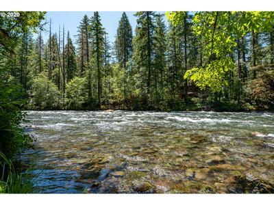 55476 MCKENZIE RIVER DR, Blue River, OR 97413 - Photo 2