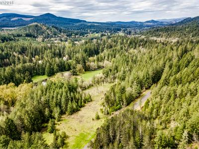 RR ANDERSON RD, Dexter, OR 97431 - Photo 1