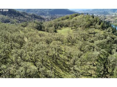 0 WILD FERN DR, Winchester, OR 97495 - Photo 2