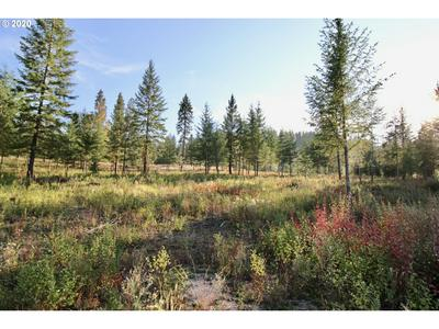 RAIL CANYON RD LOT 4, Ford, WA 99013 - Photo 2