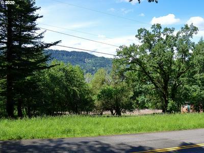 47845 E HIST COLUMBIA RIVER HWY, Corbett, OR 97019 - Photo 1