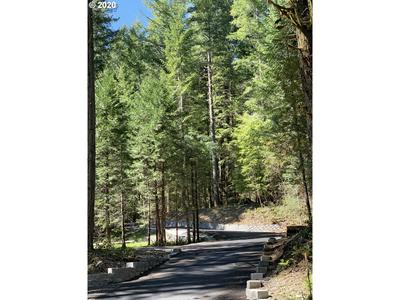 BLUE RIVER RD 200, Blue River, OR 97413 - Photo 1