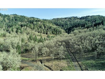 0 WINCHESTER CREEK AVE, Winchester, OR 97495 - Photo 1