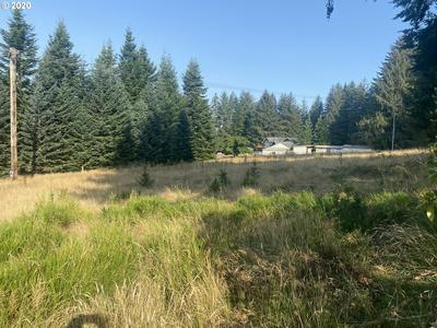 0 CAPE FERRELO RD, Brookings, OR 97415 - Photo 2