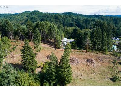 0 FISHER RD, Buxton, OR 97109 - Photo 2