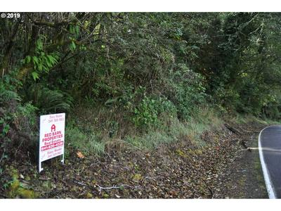 COUNCIL HILL WAY, LAKESIDE, OR 97449 - Photo 1