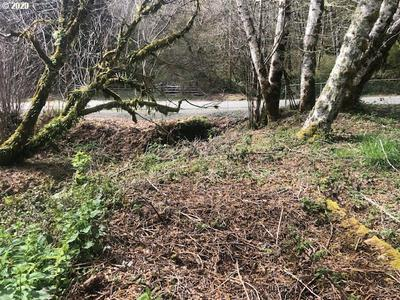 WINCHUCK RIVER RD, Brookings, OR 97415 - Photo 2