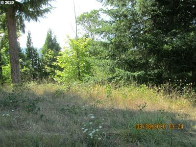 76697 BUGLE LOOP # 900, Oakridge, OR 97463 - Photo 2