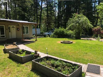 80665 LOST CREEK RD, Dexter, OR 97431 - Photo 2