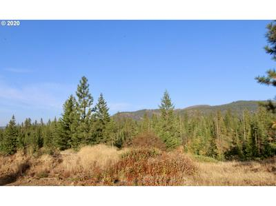 RAIL CANYON RD LOT 6, Ford, WA 99013 - Photo 1