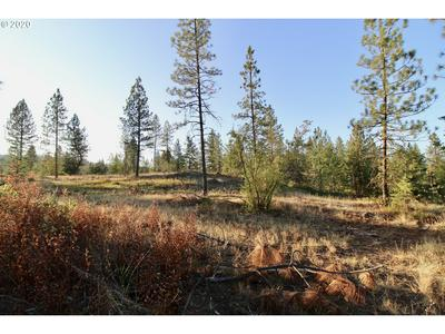 RAIL CANYON RD LOT 5, Ford, WA 99013 - Photo 2