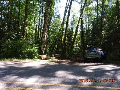 0 BARLOW TRAIL RD, Brightwood, OR 97011 - Photo 2