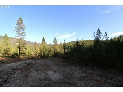 RAIL CANYON RD LOT 8, Ford, WA 99013 - Photo 2