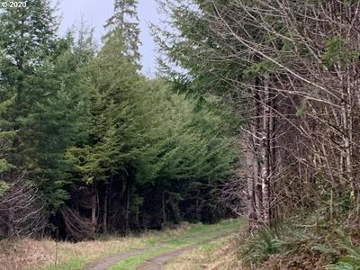 STIMSON SOUTH COUNTY, Siletz, OR 97380 - Photo 2